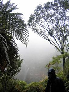 Misty View On Tupapakurua Falls