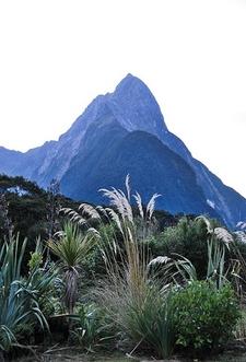 Mitre Peak - Milford Sound - Southland NZ
