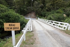 Mokaui Stream Bridge - Te Urewera NP - North Island NZ