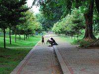 Monas Park