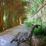 Monforte Gardens