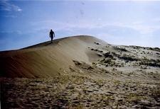 Mongolia Gobi Desert Landscape
