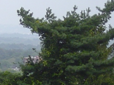 Montclair Overlook
