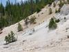 Monument Geyser Basin Trail - Yellowstone - Wyoming - USA