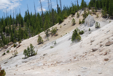 Monument Geyser Basin Trail - Yellowstone - Wyoming - USA