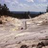 Monument Geyser - Yellowstone - USA