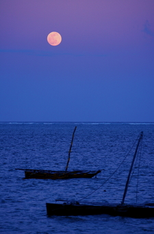 Moonlit Boats In Mombasa