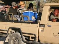 Moremi Game Reserve Safari