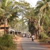 Morjim Goa