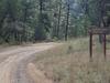 Mormon Ridge Trail