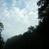 Morning At Kahang