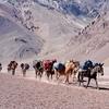 Mount Aconcagua - Mendoza - Argentina