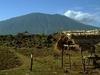 Mountain Baluran