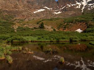 Monte Bierstadt