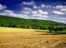 Mount Carmel Township - Northumberland County - Pennsylvania
