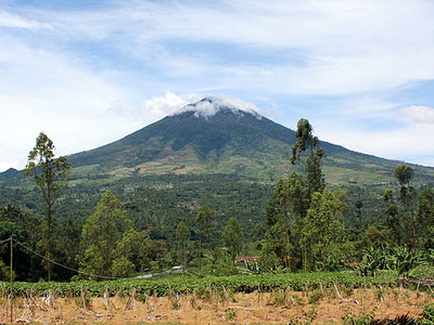 Mount Cikuray From Cisurupan