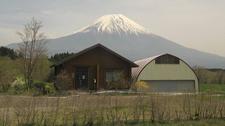 Mount Fuji From Below - Japan