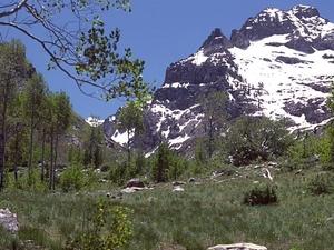 Mount Gilbert