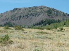 Mount Hilgard