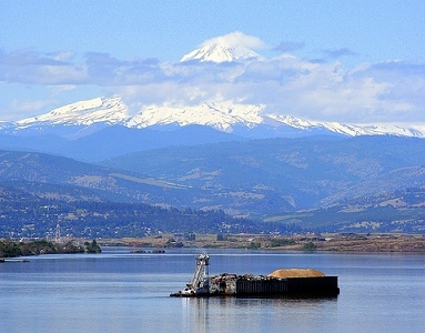 Mount Hood Over Columbia River