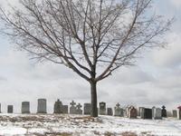Mount Hope Cemetery Católica