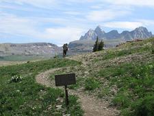 Mount Jedediah Smith - Grand Tetons - Wyoming - USA