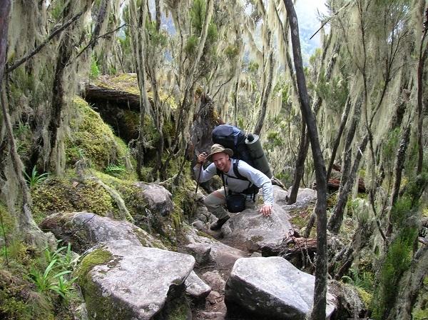 6 Days Mount Kilimanjaro Umbwe root Photos
