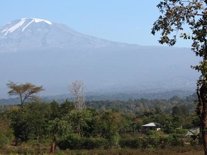 One Day Trip Around Kilimanjaro Photos