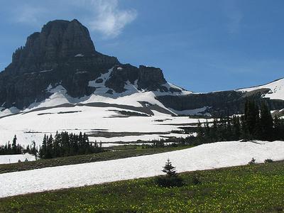 Mount Logan At Glacier - USA