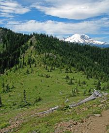 Mount Rainier Wilderness