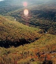Monte Redington