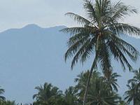 Monte Sago