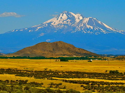 Mount Shasta View