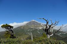 Mount Taranaki Views - Egmont National Park