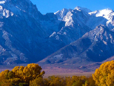 Mount Williamson View