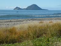 Moutohora Whale Island Wildlife Management Reserve