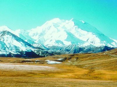 Mt. McKinley In Summer From Denali Preserve