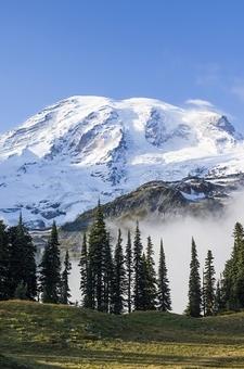 Mt. Rainier From Mazama Ridge WA