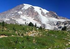 Mt. Rainier From Panorama Point Trail WA