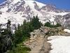 Mt. Rainier From Paradise WA