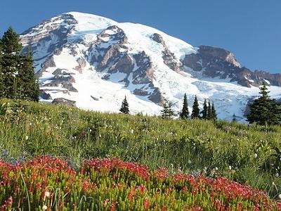 Mt. Rainier Wilderness WA