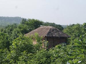 Muba's Machaan