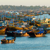 Mui Ne Fishing Harbour Boats