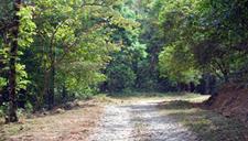 Mukurthi National Park Trekking And Camping