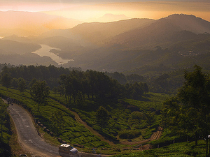 Munnar - Explore the Hills Photos
