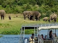 Murchision Falls Safari