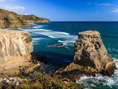 Muriwai - West Coast - North Island NZ