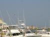 Seafood Capital Of South Carolina