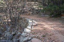 Myrtle Trail - Near Mogollon Rim