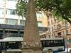 Macquarie Obelisk